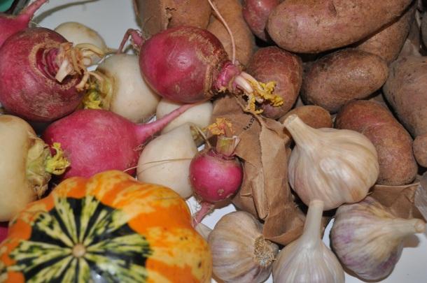 csa fall 2012 week 7 043