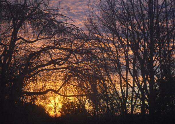 sunrise new year's eve