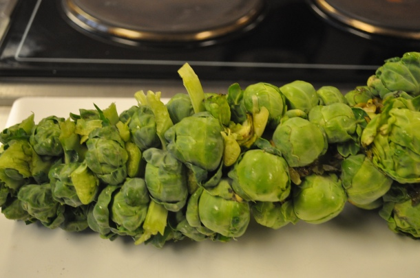 TLV brussels sprouts