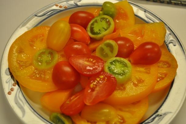 last year's tomatoes