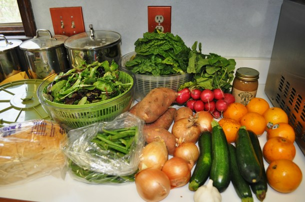 early bird csa week 8 and conservancy pilot 115
