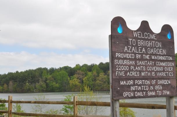 burtonsville and brighton dam 083
