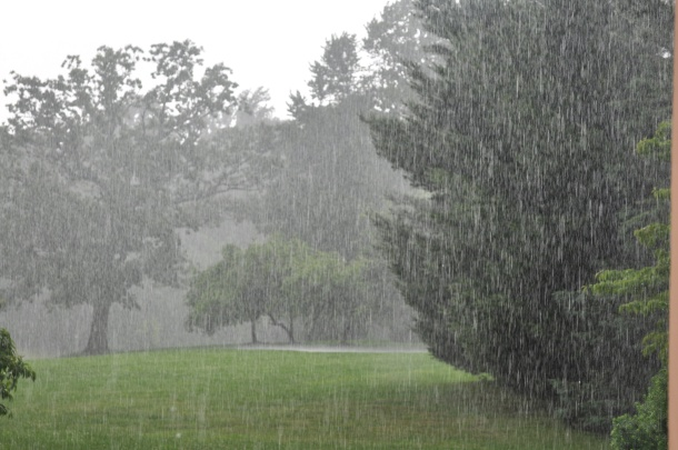 weather with the rain 076