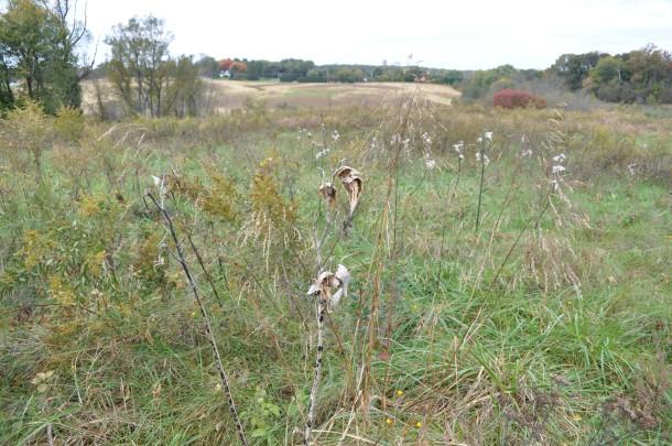 conservancy fall field trips 047