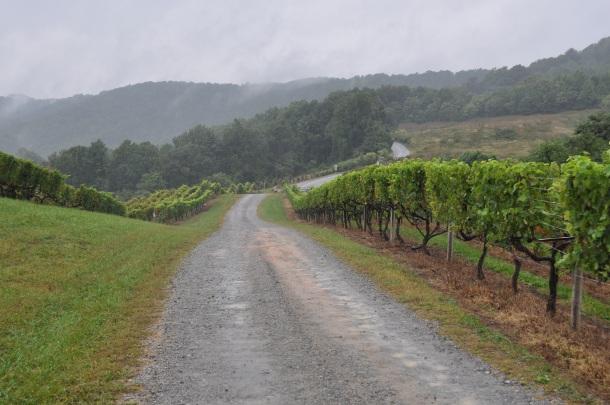 Fall wine trip 145