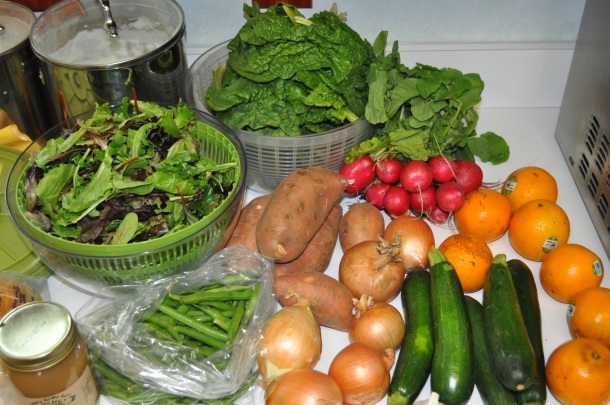 early bird csa week 8 and conservancy pilot 113