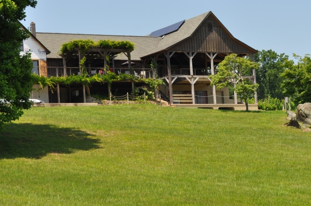 linden vineyards 030