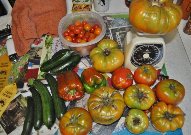 garden processing 020
