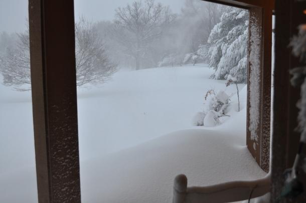 winter 2010 134