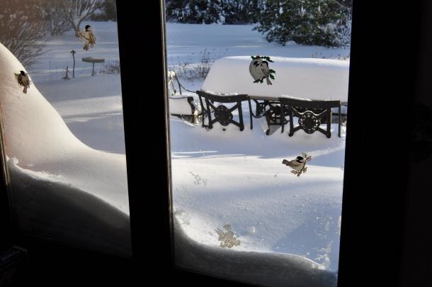 winter 2010 077