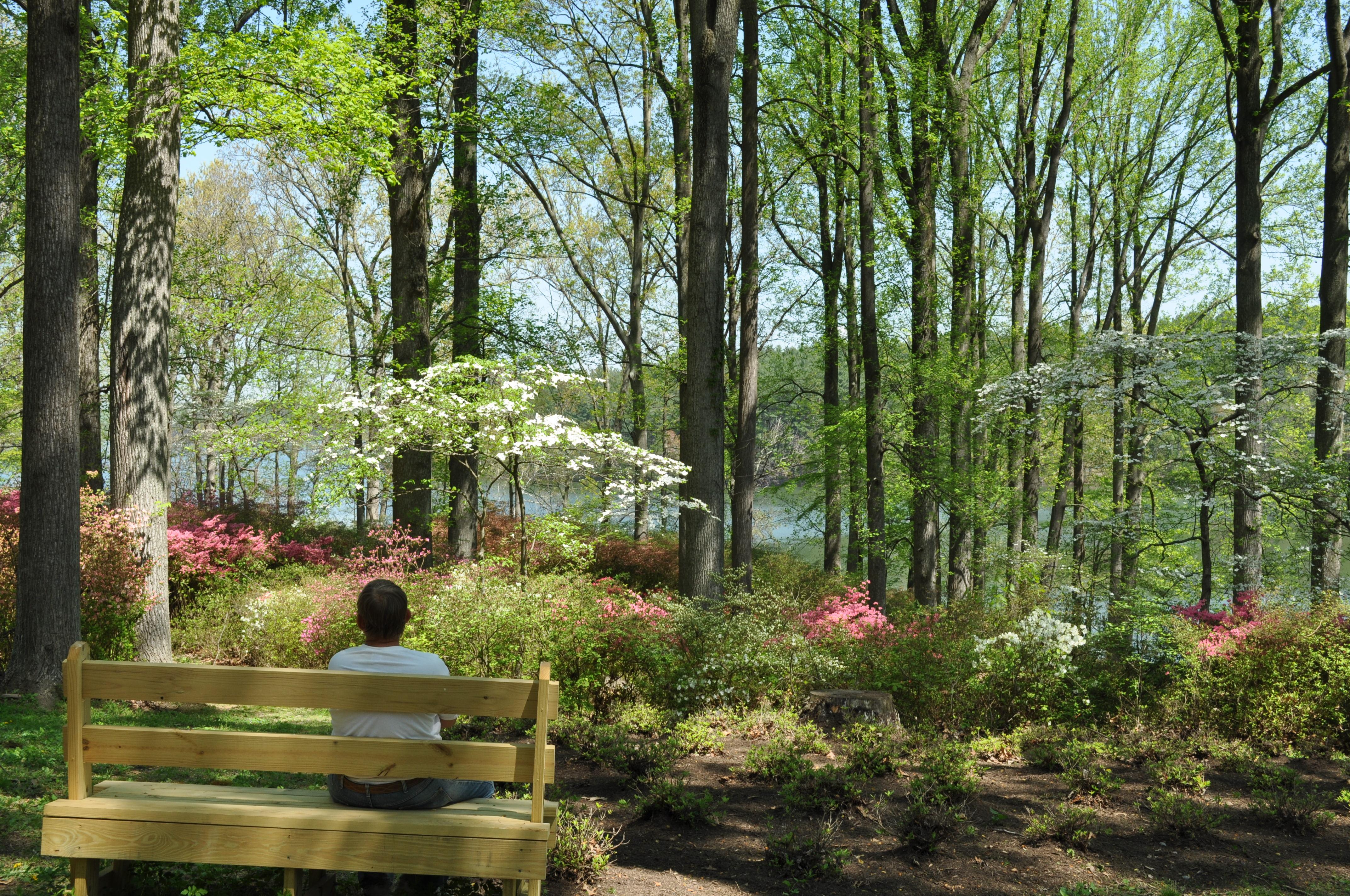 brighton dam picnic 027