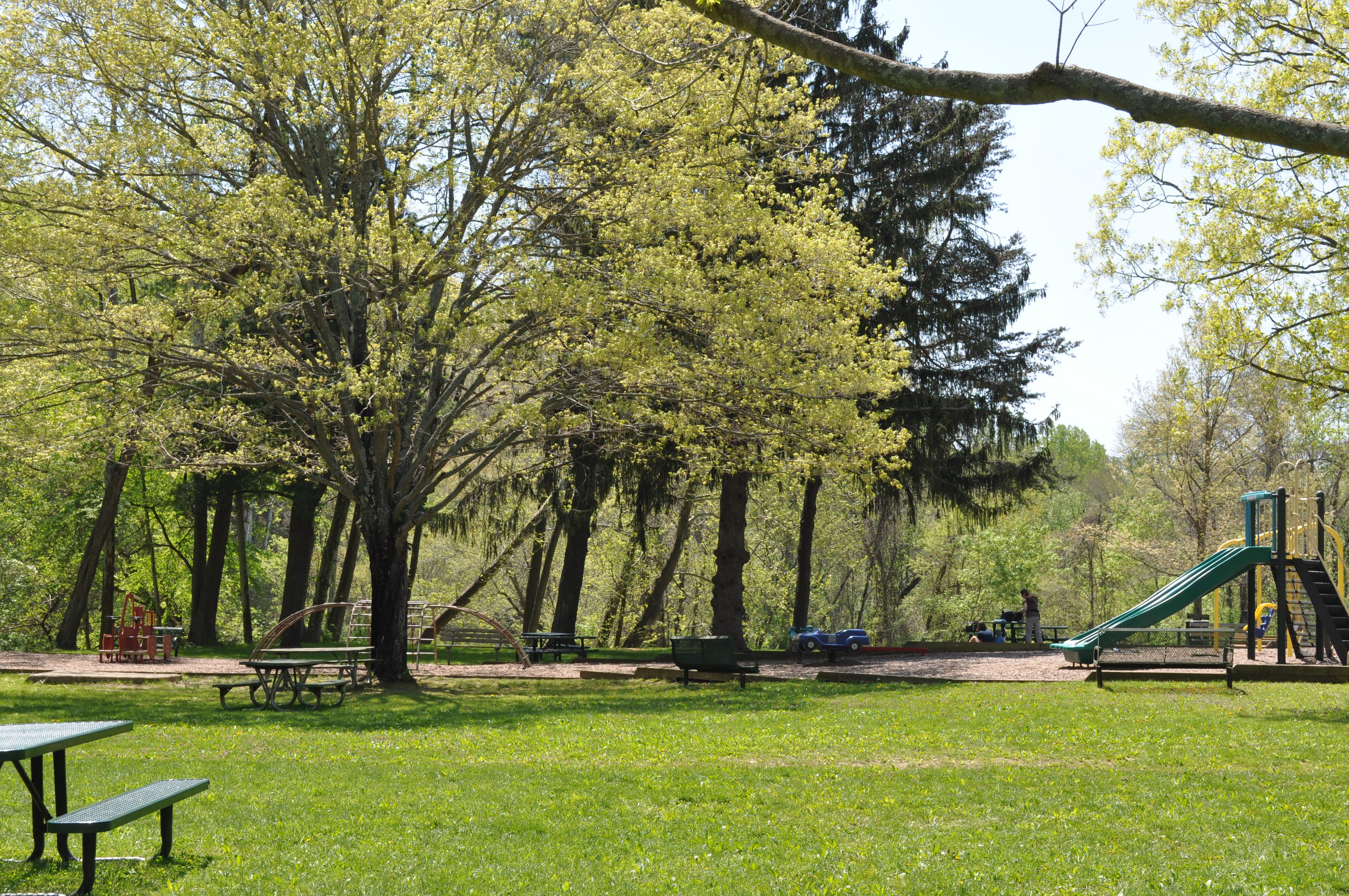 brighton dam picnic 034