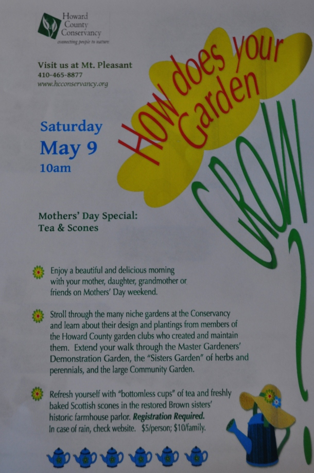 FF may6 and garden flier 015