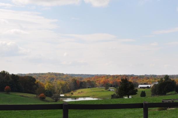 farm scenes fall 035