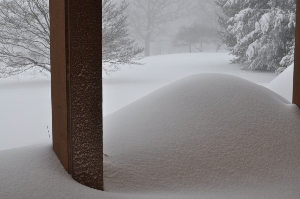 snowmageddon 2016 016