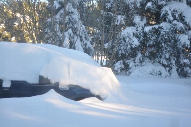 snowmageddon too 024