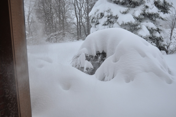 winter 2010 135