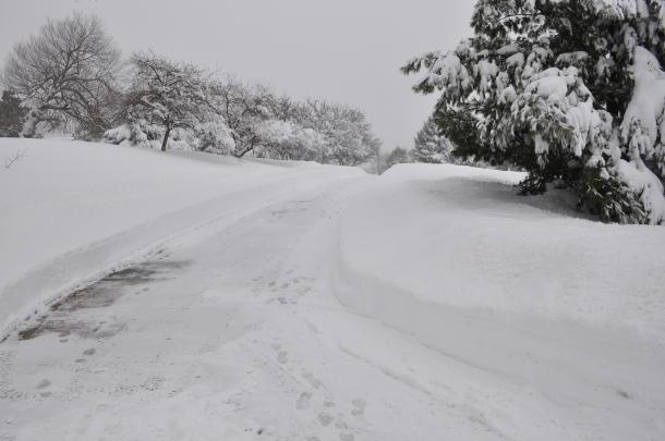 winter 2010 158
