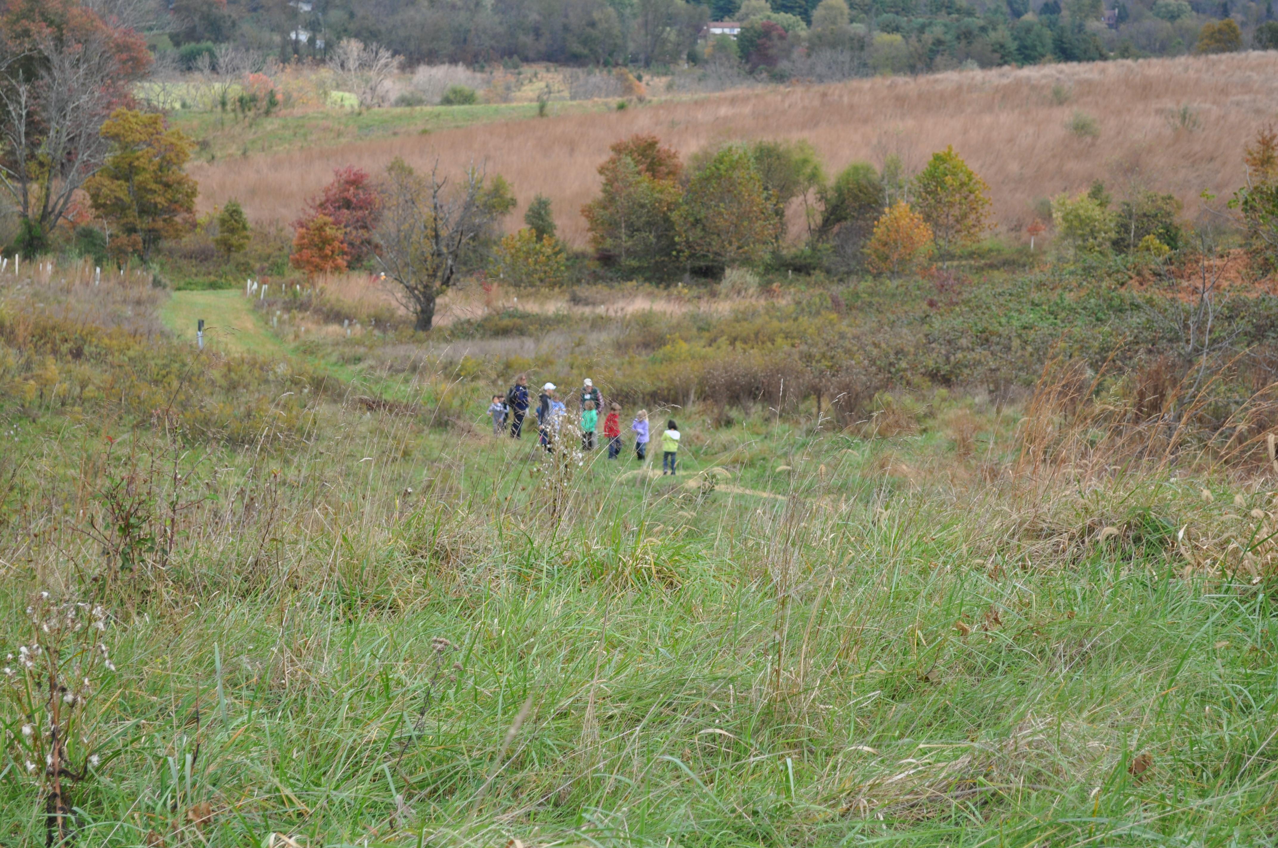 conservancy fall field trips 064