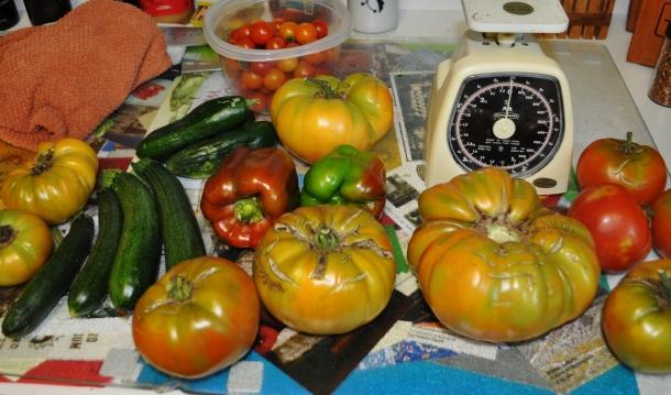 garden processing 012