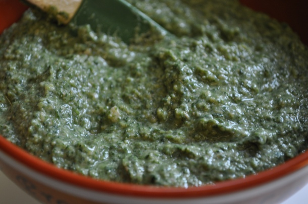 grosbeak meadow linden csa and spinach dip 102