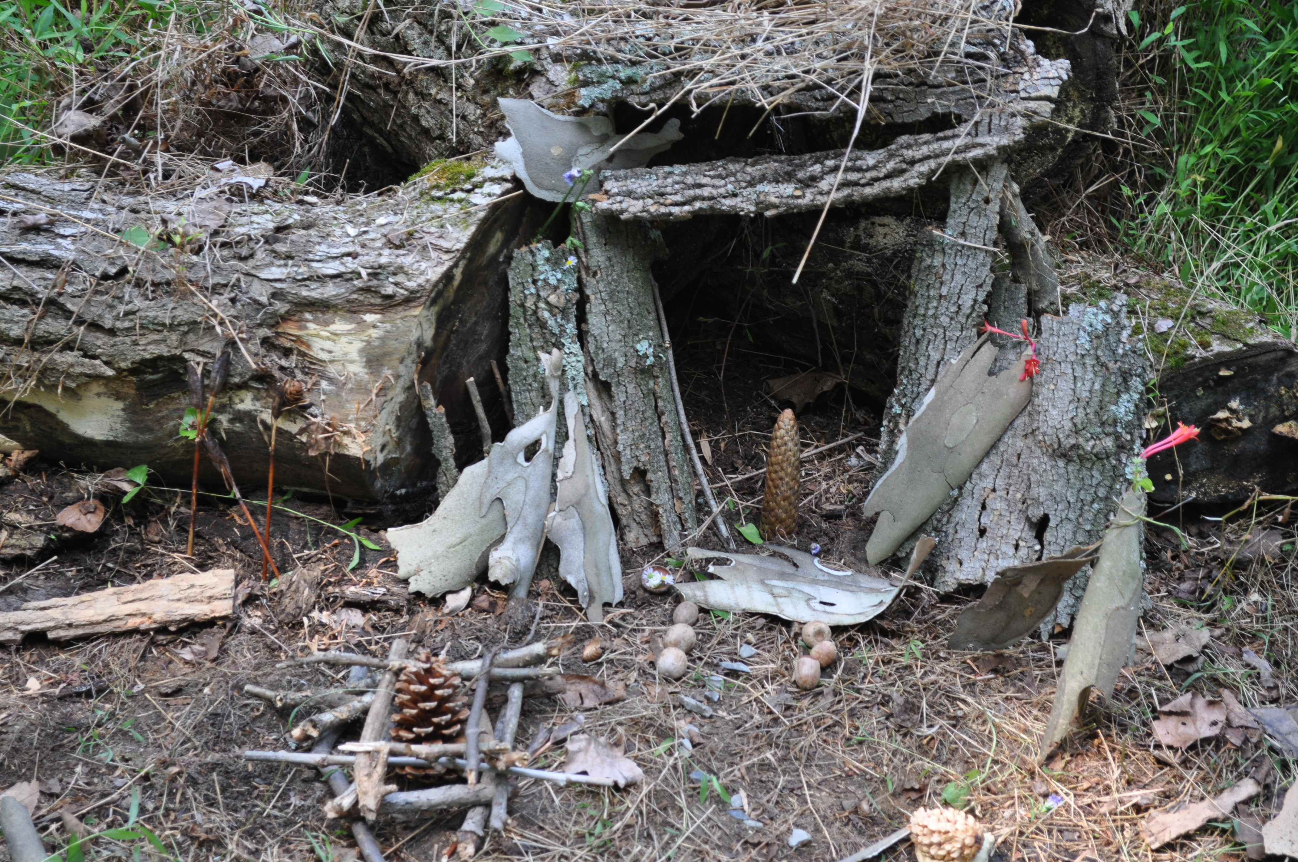 fairy houses and food pics 014