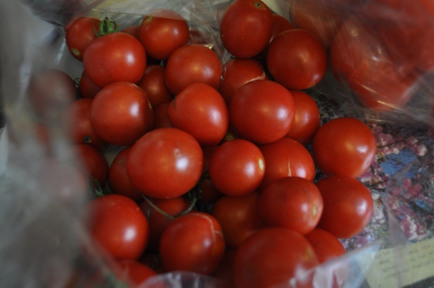 tomatoes-csa-and-deck-004