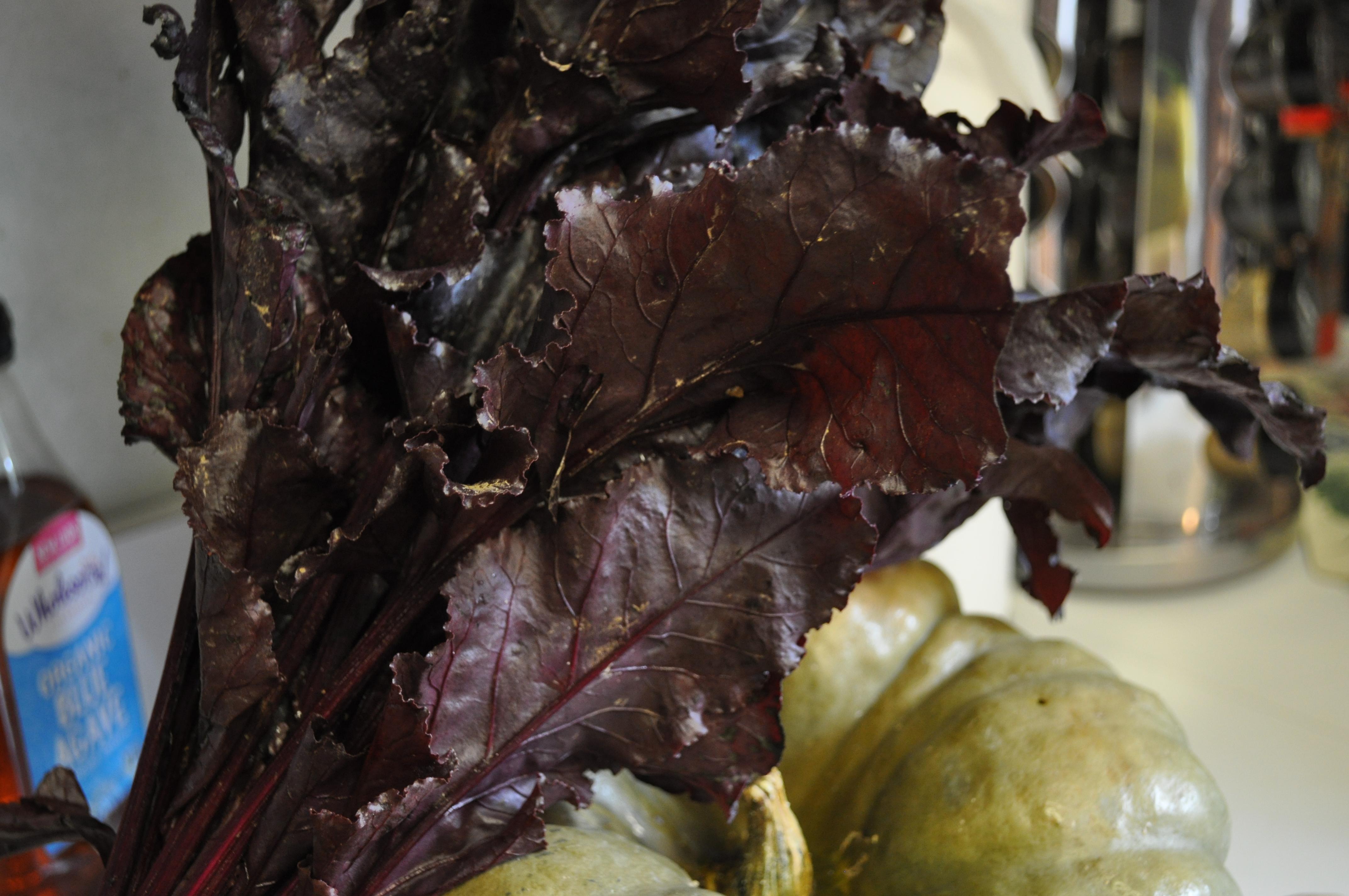 csa-and-more-interesting-veggies-018